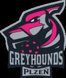 Greyhounds Plzeň